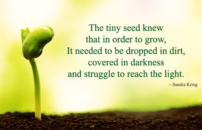 Nature Quotes about Life and Struggles Images